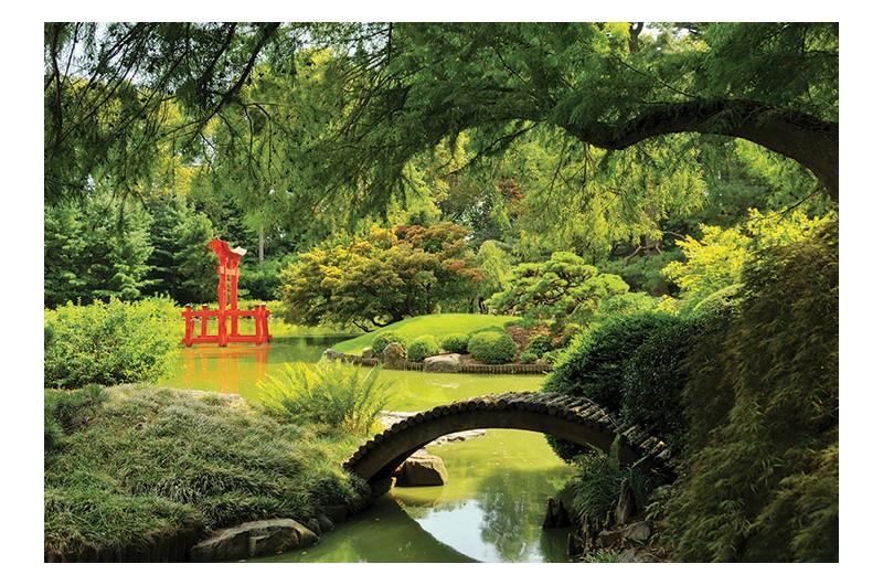 Brooklyn Botanical Garden Free