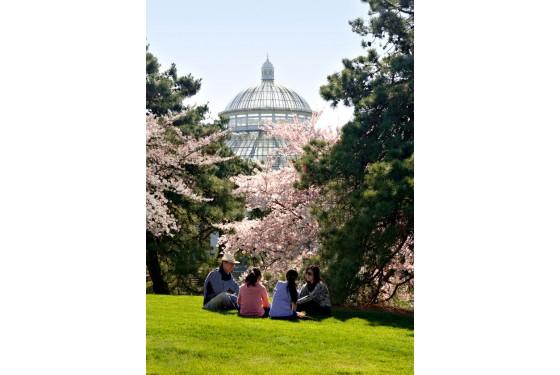 New York Botanical Garden Pavillon
