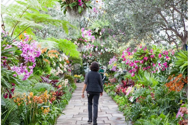 New York Botanical Garden - Turbopass