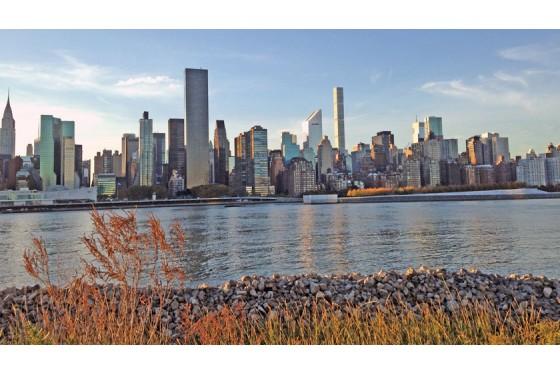 Brooklyn Unplugged Brooklyn Heights Dumbo Walking Tour