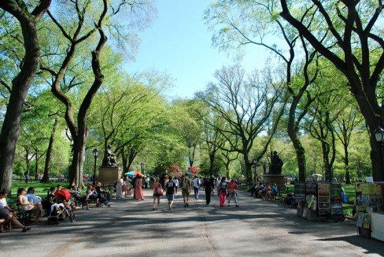 Central Park Sightseeing Walking Tour